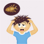 Important Facts You Should Know about Head Lice